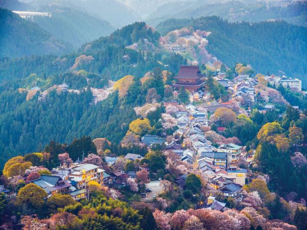 Tradition Modernity Nara Mountain Luxury Travel Japan Regency Group