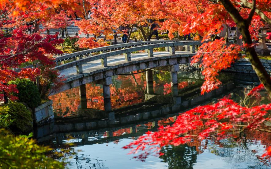 fall japan luxury travel japan regency group