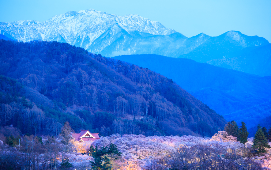 Cherry Blossoms Season Takato Castle Nagano Luxury Travel to Japan Regency Group