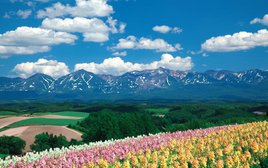 hill hokkaido travel japan regency group