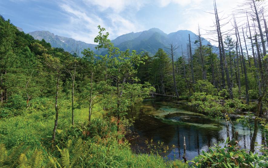 Azusa River Travel Japan Regency Group