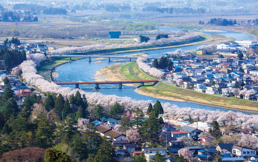 Cherry Trees Kakunodate Luxury Travel Japan Regency Group
