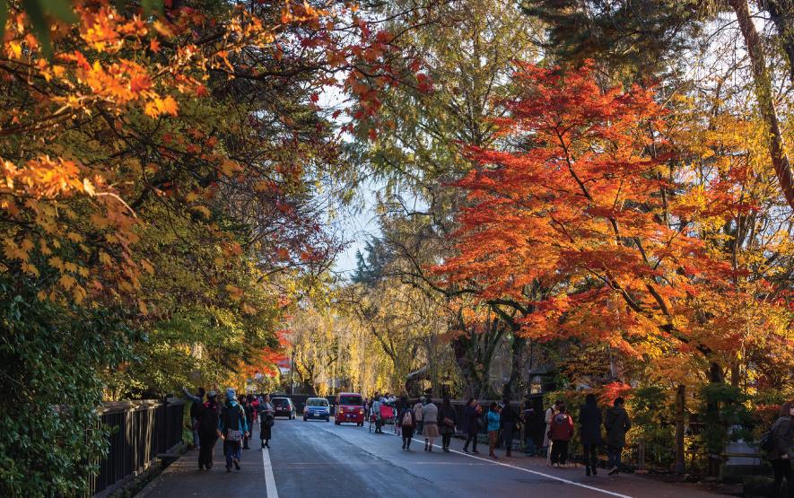 Fall Kakunodate Luxury Travel Japan Regency Group