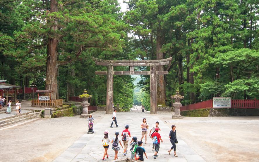 Torii Toshogu Temple Travel Japan Regency Group