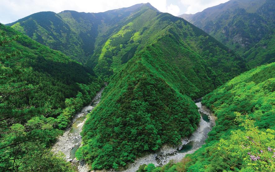 Travel Shikoku Regency Group Japan