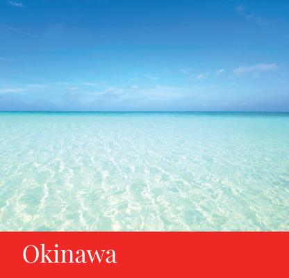 destination okinawa japan regency group
