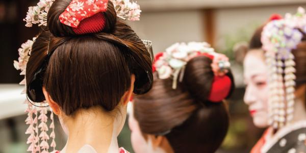 geisha regency group japan